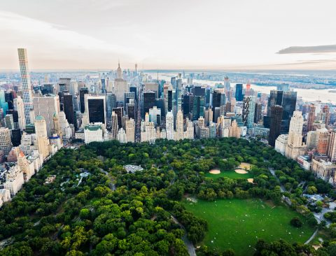 The Healthy NYC Guide