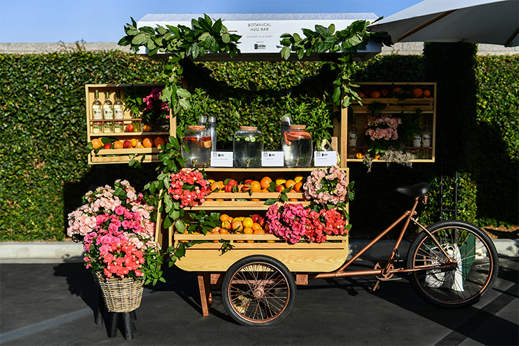 Ketel One Botanical cart