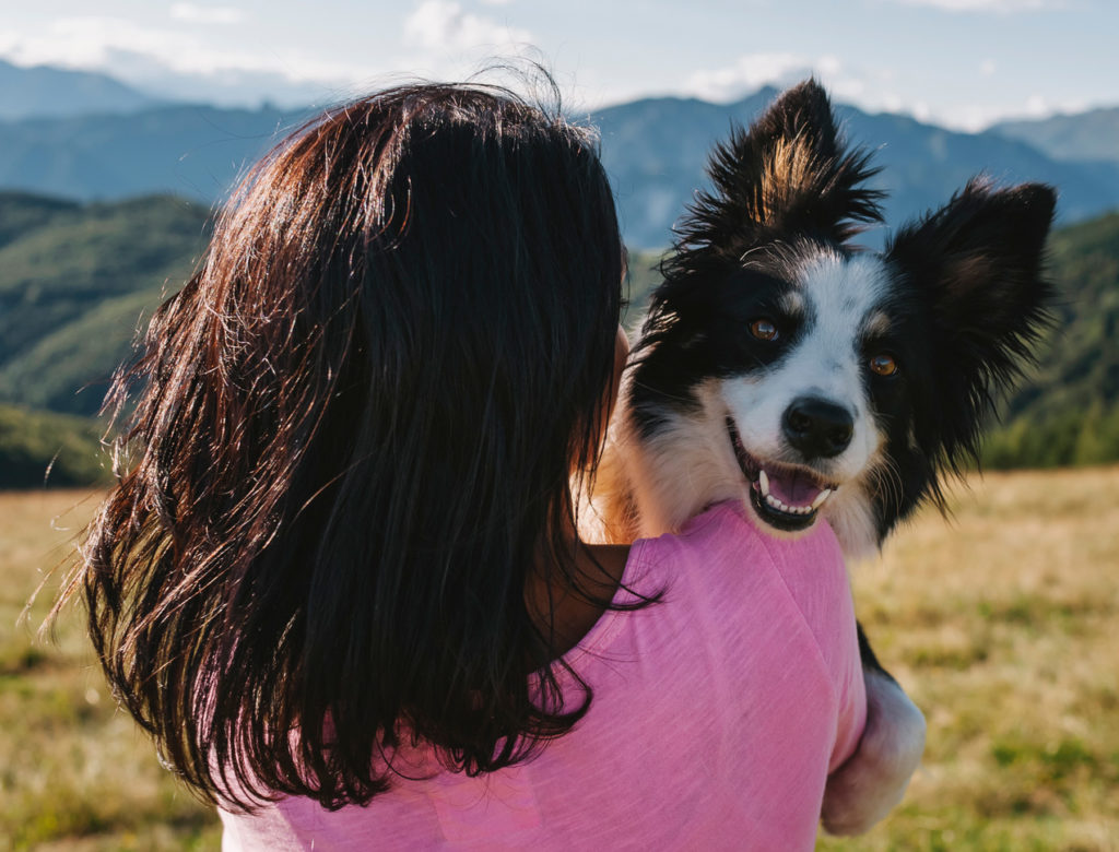 The Joy, Comfort, and Stress-Reducing Power of Pets 1
