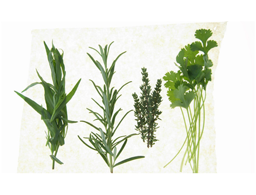 The Importance of Detoxing Your Body | Goop