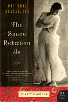 The Space Between Us, by Thrity Umrigar