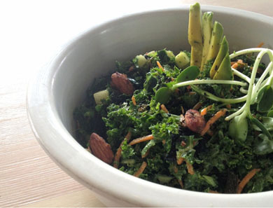 RAW KALE & SEA WEED SALAD_390x297