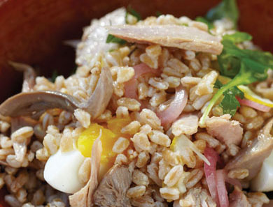 Farro Salad with Preserved Tuna_390x297