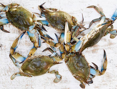 Fried Soft-Shell Crab (Kara-age) with Green Chili Ginger Dressing