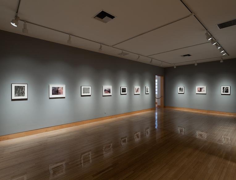 Fraenkel Gallery