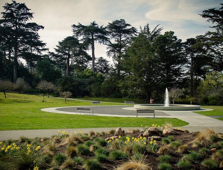 Sf botanical garden hours san francisco botanical garden for Botanical gardens hours today