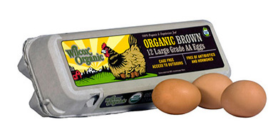 Decoding the Carton: How To Buy Clean & Humane Eggs - Certified Humane