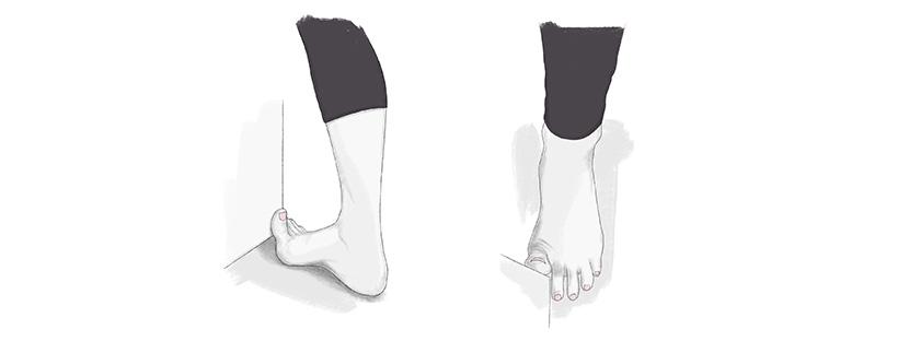 FHL Stretch