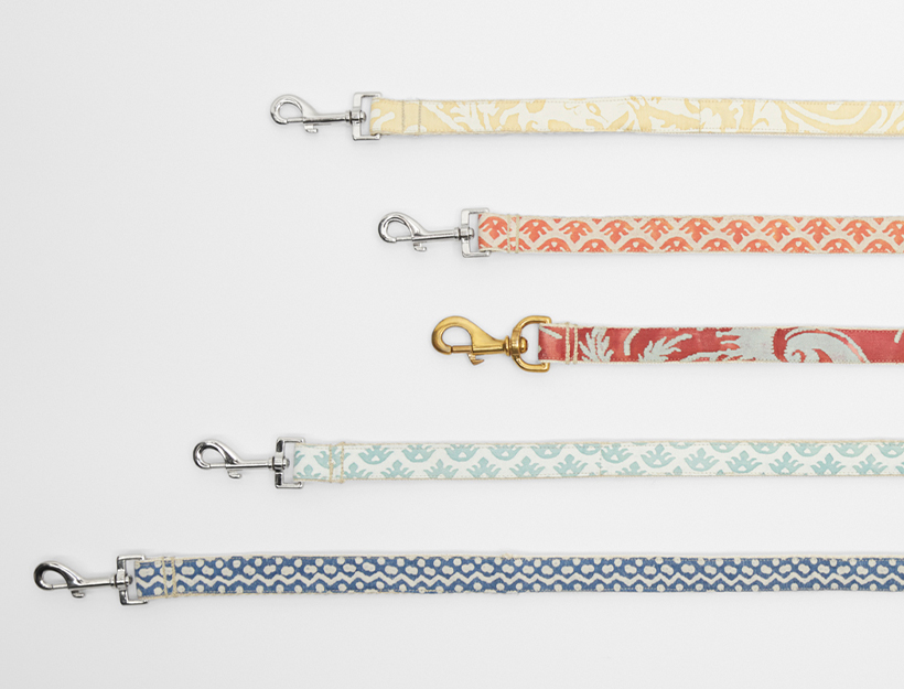 DogCollars-Featured