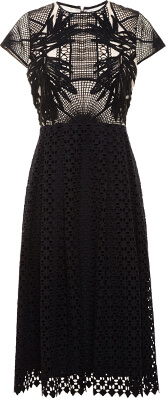 Erdem Guipere Lace Shirly Dress
