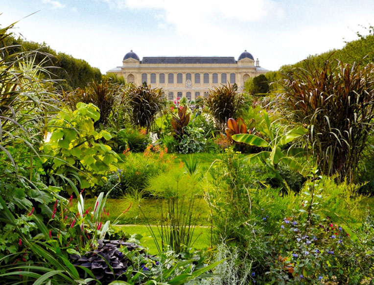 The paris kids guide goop for Le jardin de plantes