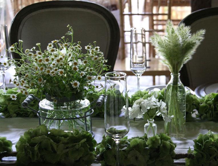 The Velvet Garden Flowers