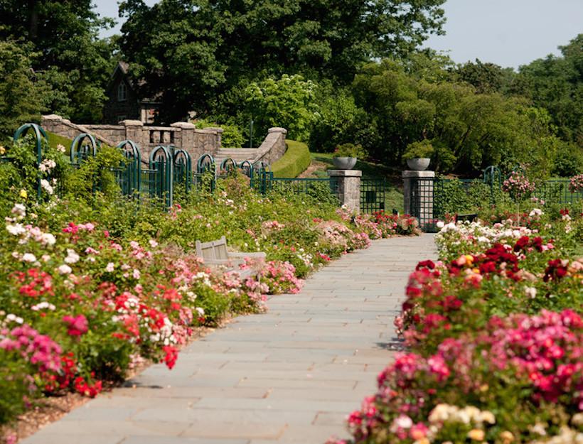 New York Botanical Garden Goop