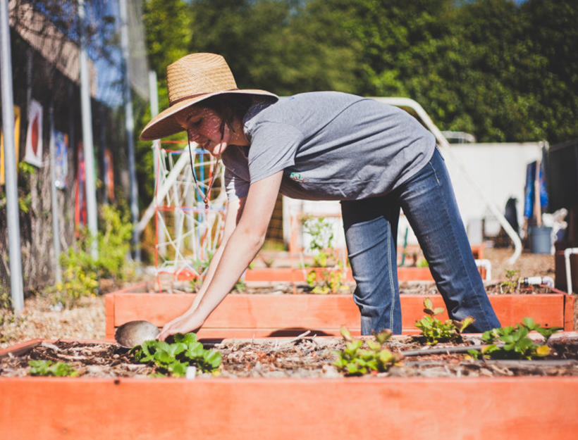 Who Knew Composting Is So Important? (Whether You Garden or Not.) | Goop