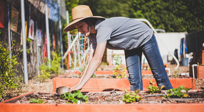 who knew composting is so important whether you garden or not