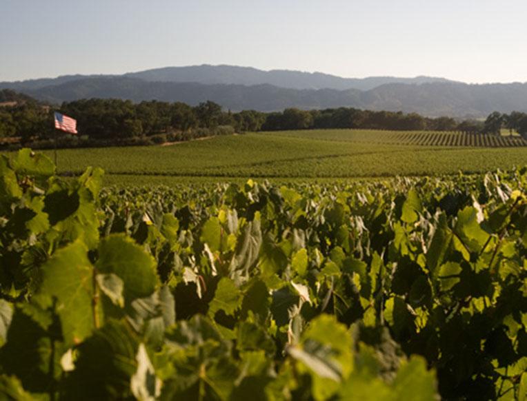 Rudd Winery