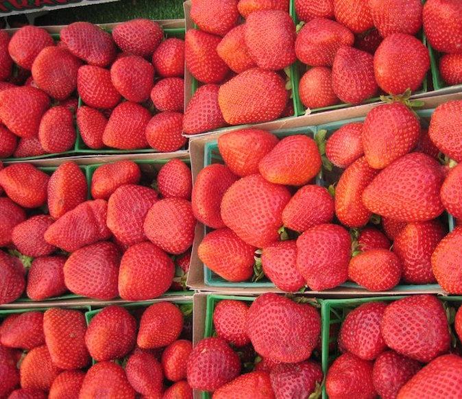 Larchmont Farmers Market