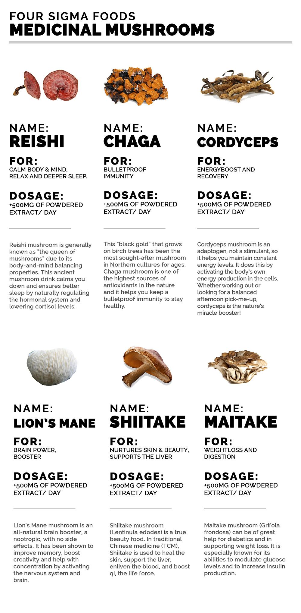 The Healing Power of Mushrooms