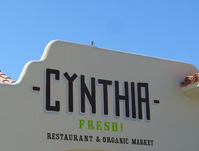 Cynthia Fresh