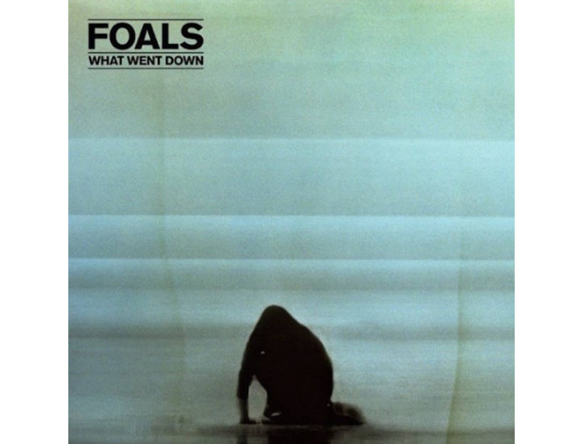 What Went Down | Foals