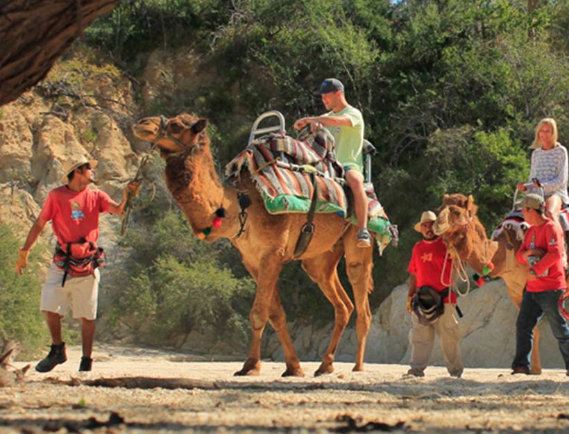 Wild Canyon Park