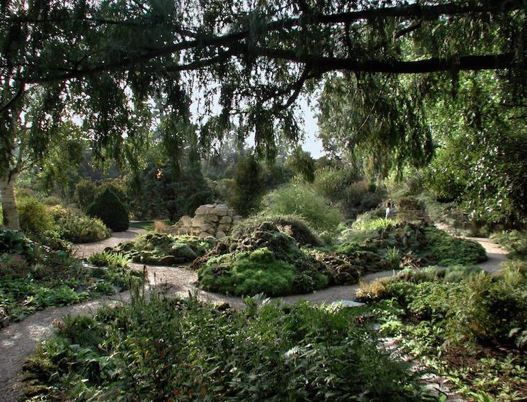 Le jardin des plantes goop for Le jardin de plantes