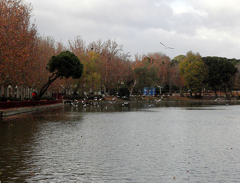 Casa de Campo Park