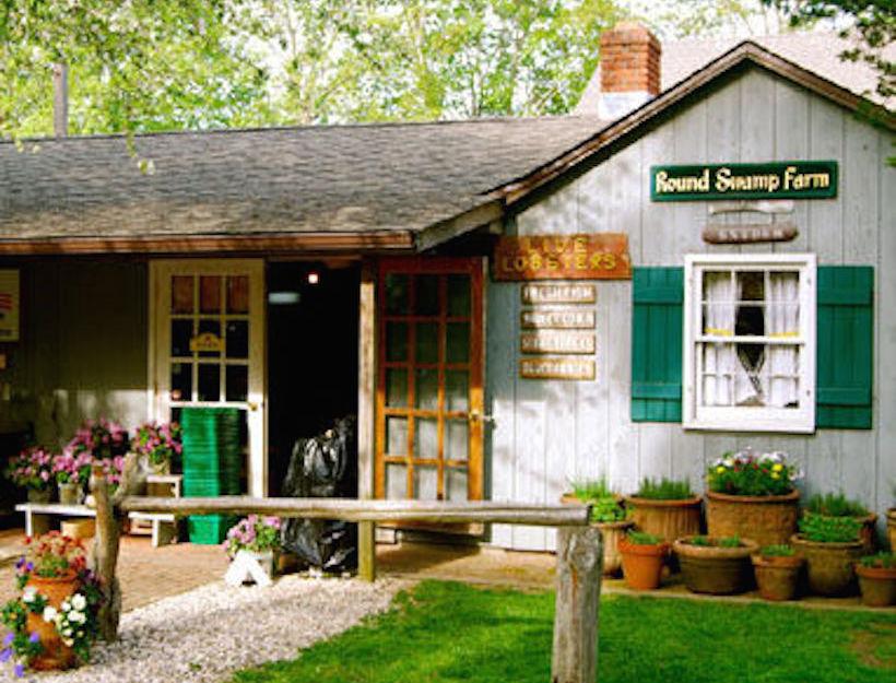 Round Swamp Farm Market