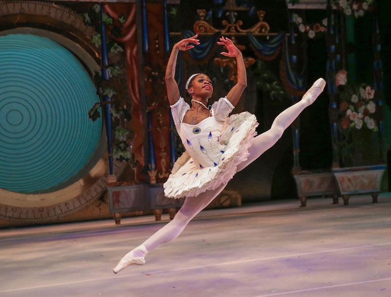 Dutch National Opera & Ballet