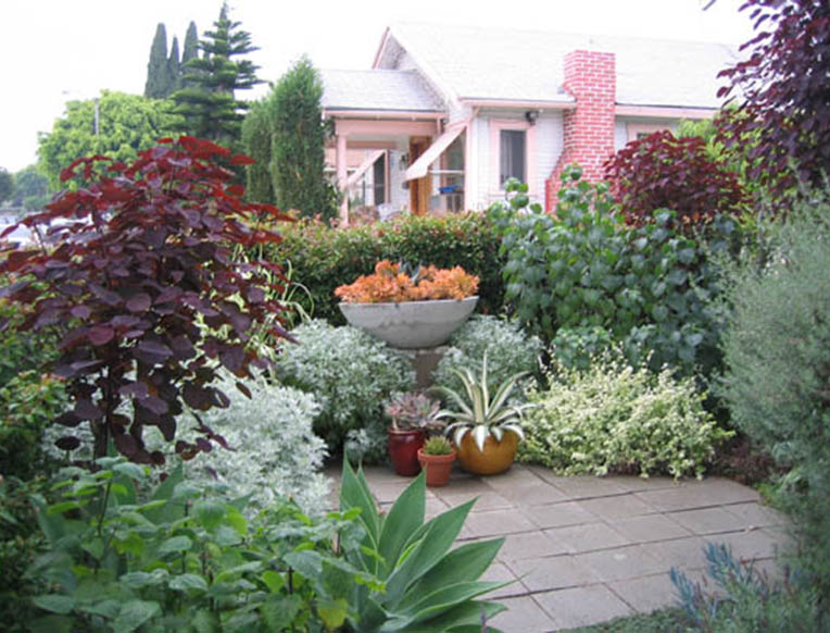Anigo Garden Design