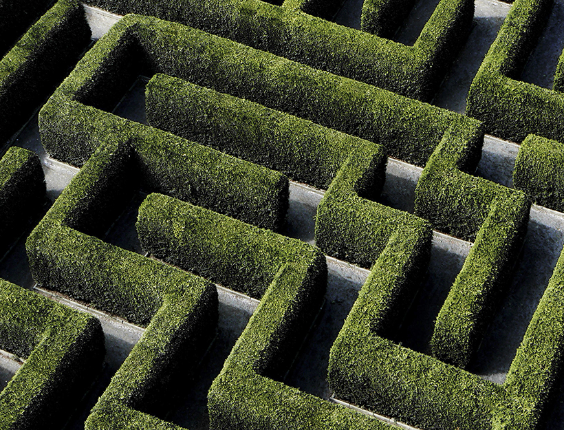 Maze made from hedges.