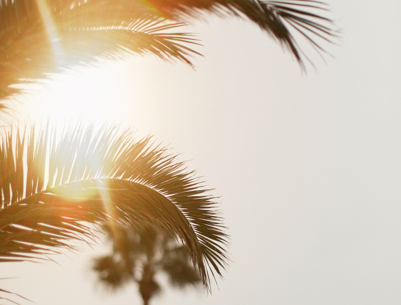 The Nuances of Vitamin D—and How to Get Enough of It | Goop