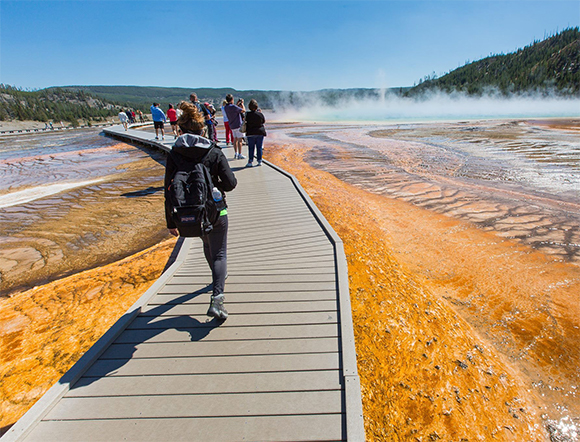 Explore Yellowstone's Geyser Basins