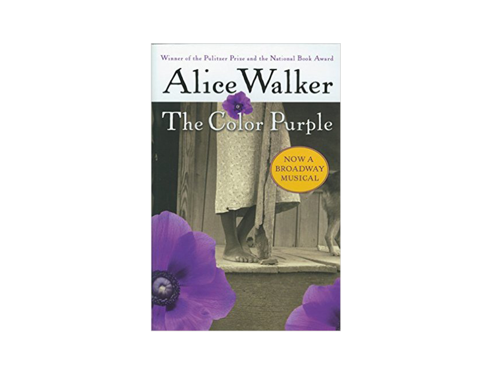 critical analysis essays color purple Review of the book the color purple, by alice walker.