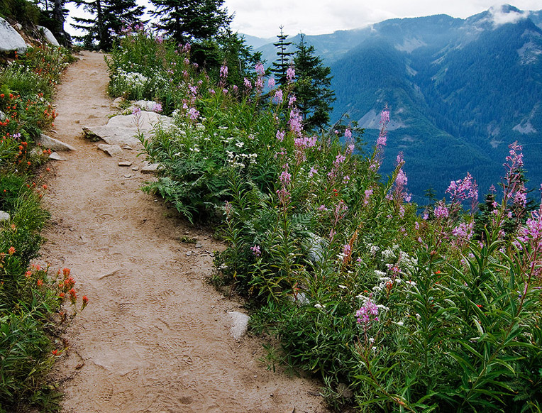 Ira Spring Trail