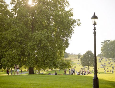 The North London Guide