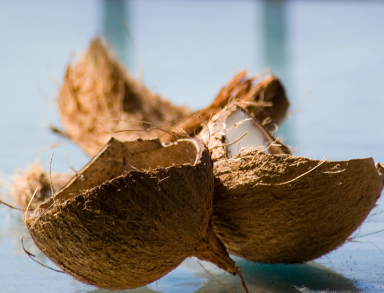 Are Coconut Products Bad for the Environment?