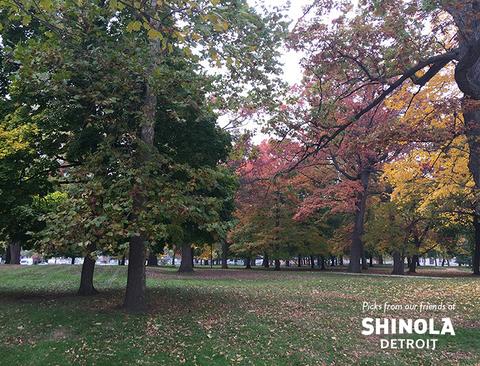 shinola-2_720_480