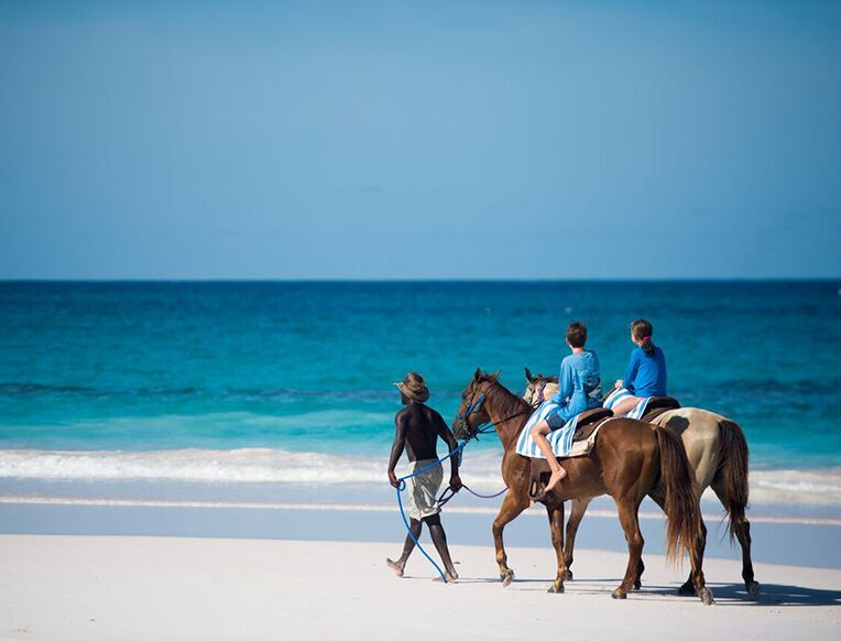 Horseback Riding on the Pink Sand Beach