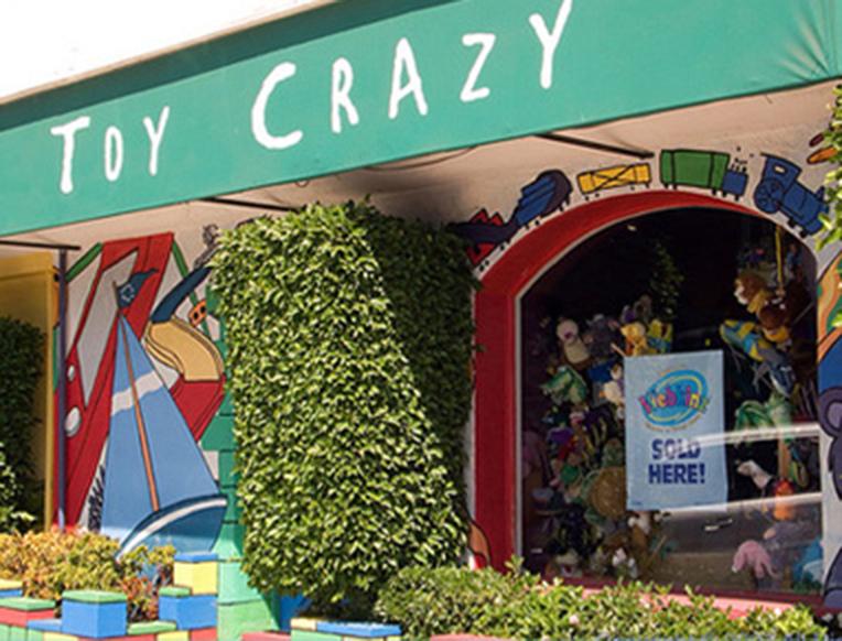 Toy Crazy