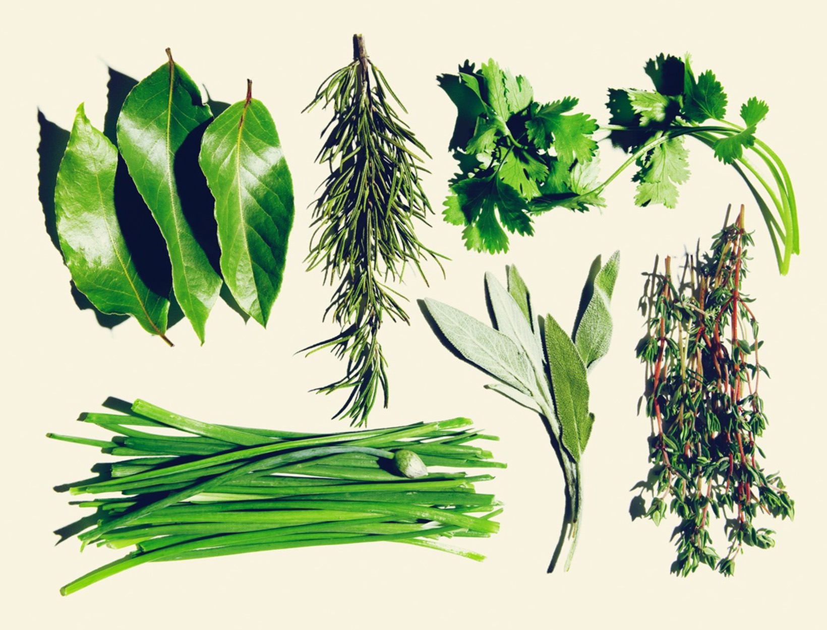 The Ultimate Spring Project: An Easy Herb Garden | goop | Bloglovin\'