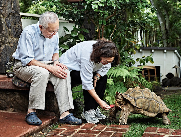 A Pet Tortoise Who Will Outlive Us All