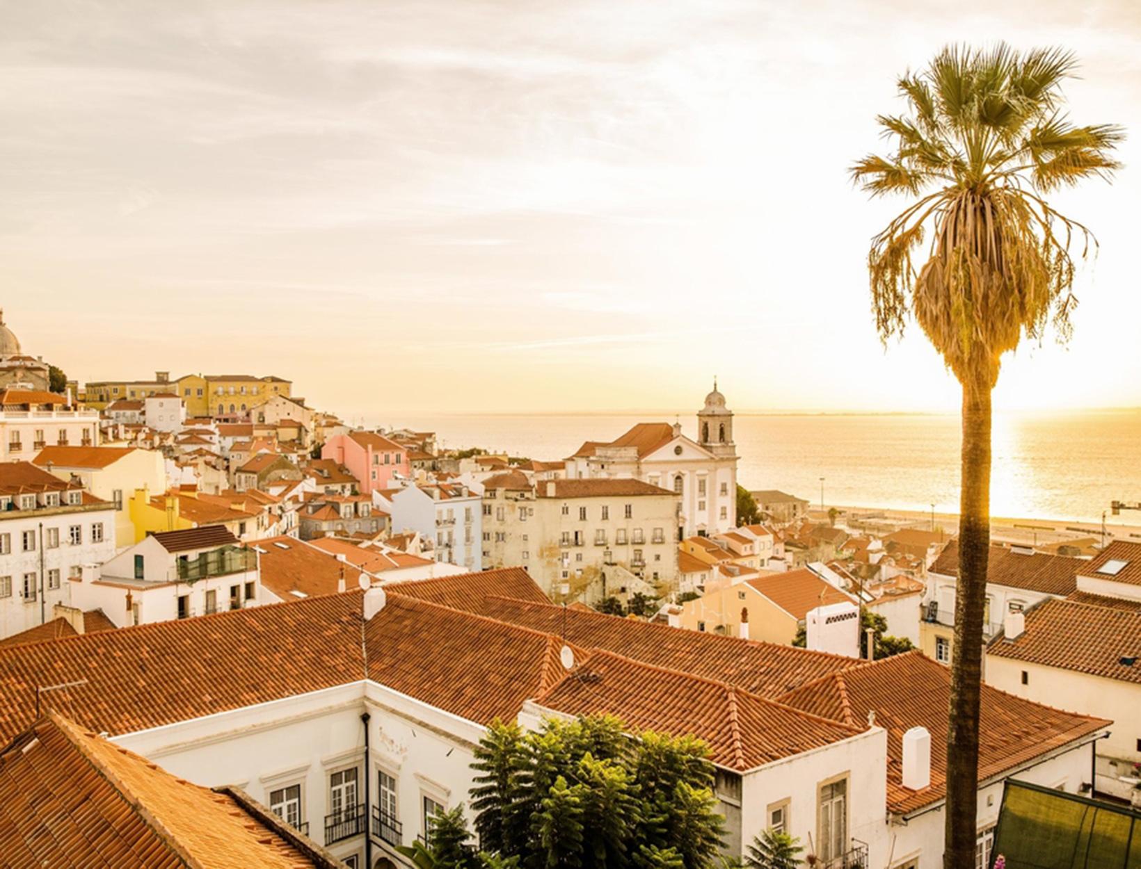 The Lisbon Guide