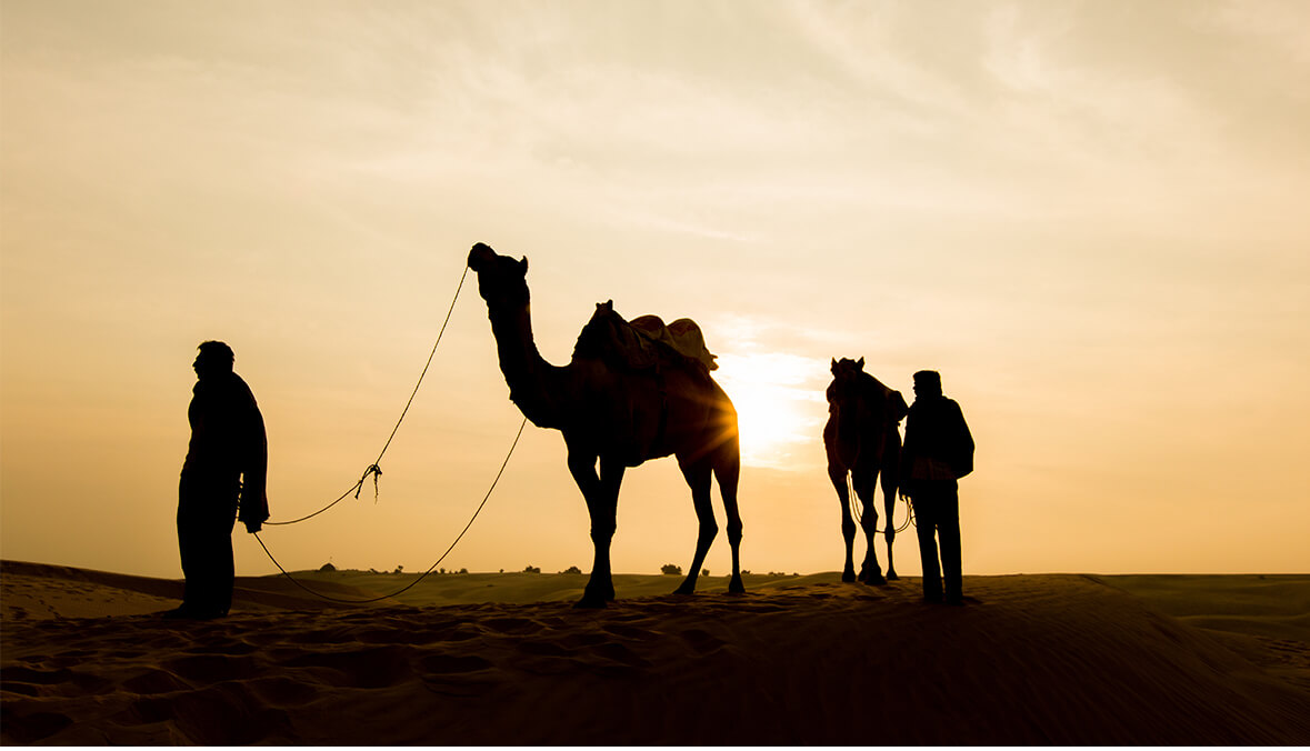 The Perfect Week in Marrakech