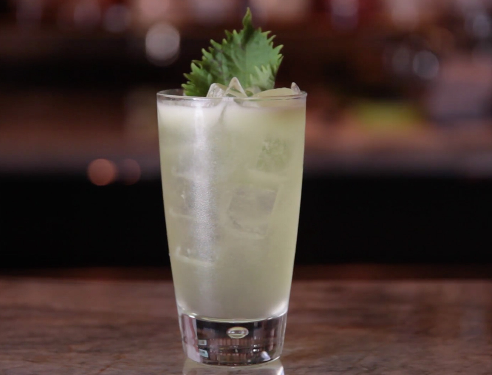 Shiso Cool Cocktail