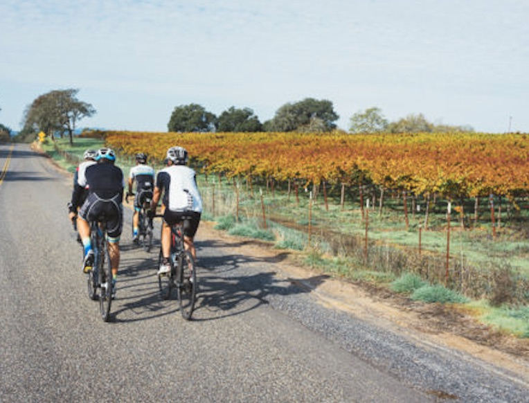 DuVine Cycling + Adventure Co. Napa & Sonoma Bike Tours