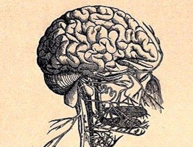 Vagus Nerve Stimulation Dramatically Reduces Inflammation