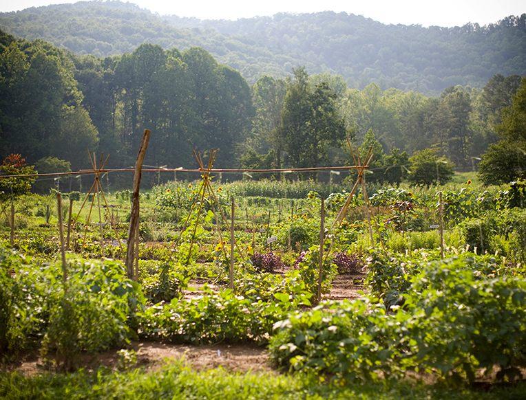 Blackberry Farm <br>Walland, Tennessee</em>