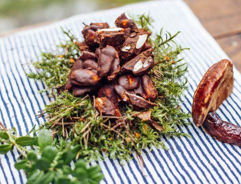 Reishi Chocolate Almonds