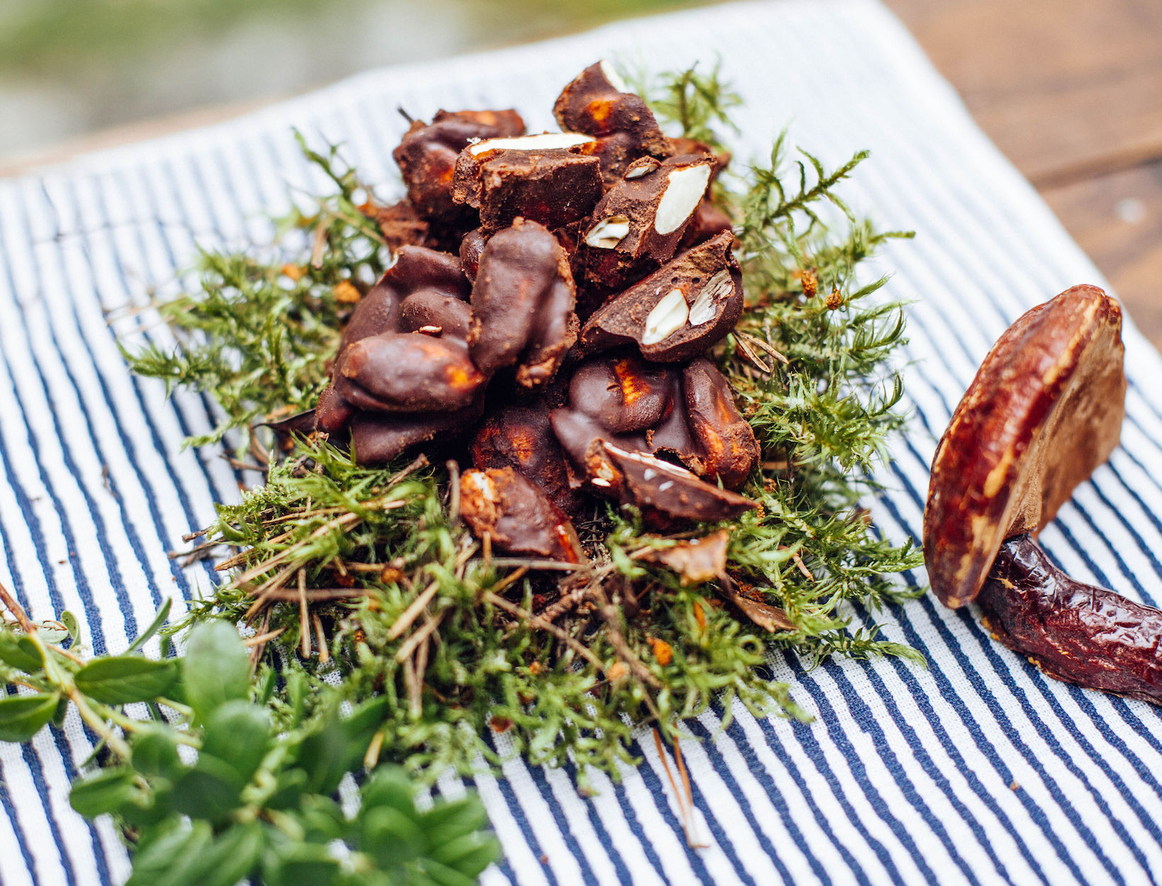 Reishi Chocolate Almonds